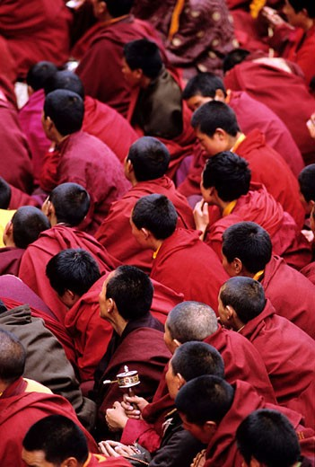 China, Eastern Tibet, Buddhist monks praying at Katok monastery : Stock Photo