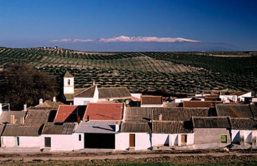 Stock Photo: 1792-62531 Spain, Andalusia, Bracana village with the Sierra Nevada mountains at the back, Andalusia
