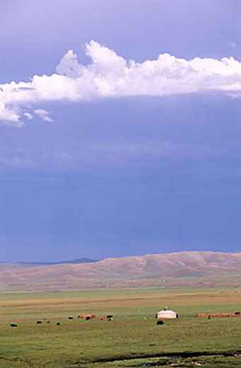 Stock Photo: 1792-63813 Mongolie, Ovorkhangai Province, Orkhon Valley