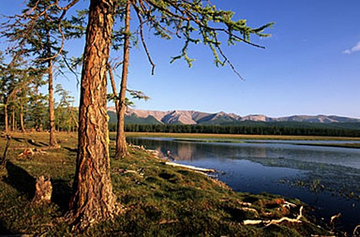 Mongolia, Khovsgol Province, Khovsgol Lake in the Khovsgol National Park : Stock Photo