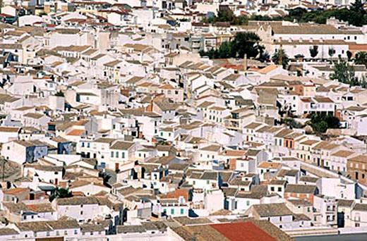 Stock Photo: 1792-65070 Spain, Andalusia, Jaen region, White villages (Pueblos Blancos), Baena village