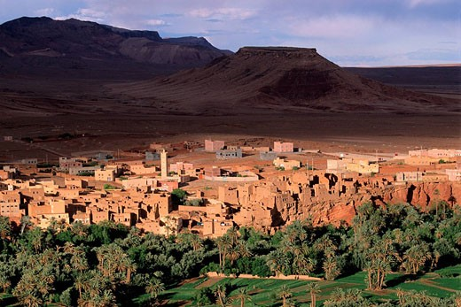 Morocco, High Atlas, valley of Todgha, oasis and palm plantation : Stock Photo