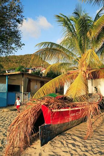 Stock Photo: 1792-66869 France, Martinique, Grand Anse,