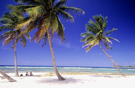 Stock Photo: 1792-68036 France, Guadeloupe French West Indies, Grande_Terre, Anse Bertrand, beach of the Chapelle
