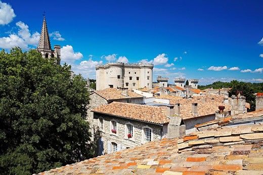 France, Bouches du Rhone, Provence, Tarascon, castle of King Rene and the Royal collegiate church St. Marthe seen from the roofs of the old town : Stock Photo