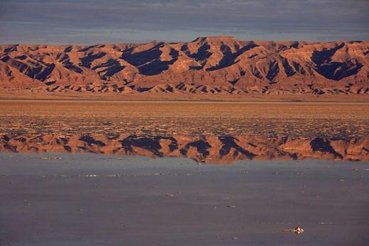 Stock Photo: 1792-72023 Tunisia, Southern Tunisia, Chott el Djerid, salt desert after rain