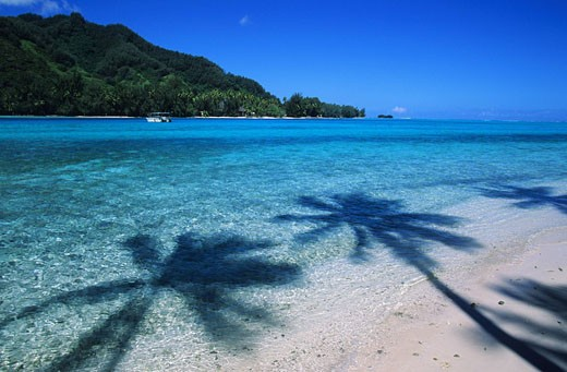 Stock Photo: 1792-72273 France, French Polynesia, Society archipelago, Windward islands, Moorea, view on Moorea from the Fareone motu