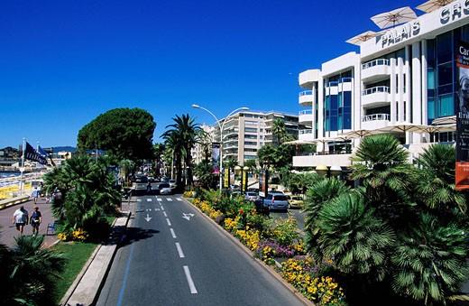 France, Alpes Maritimes, Cannes, Croisette : Stock Photo
