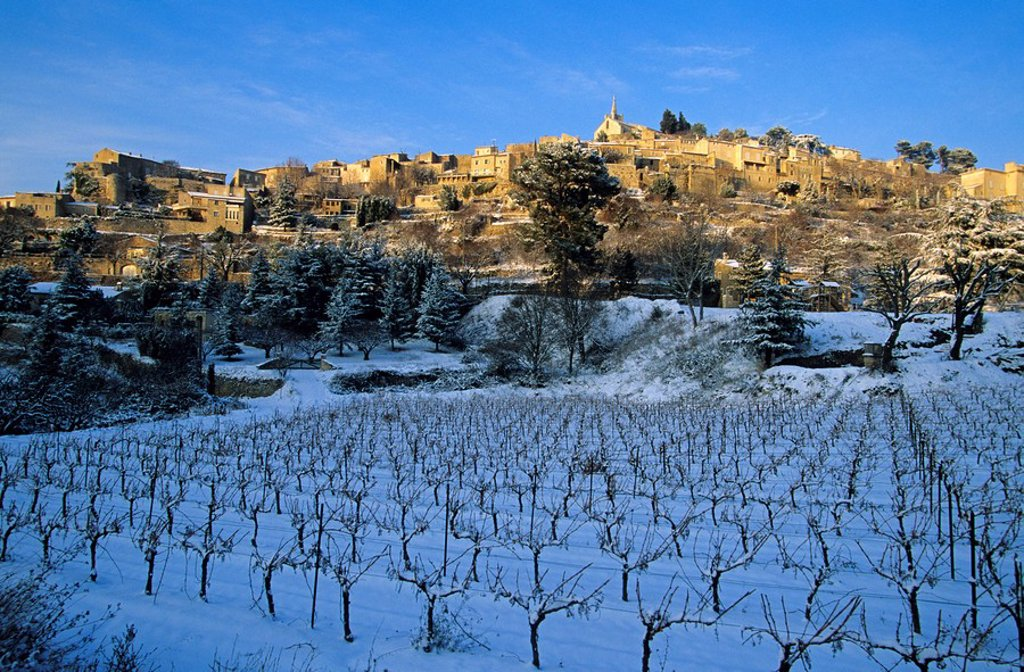 Stock Photo: 1792-75133 France, Vaucluse, Luberon, Bonnieux