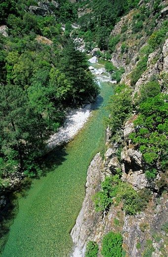 Stock Photo: 1792-75852 France, Haute Corse, south of Corte, the Vecchio river