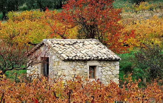 France, Drome, hut in Les Baronnies region : Stock Photo