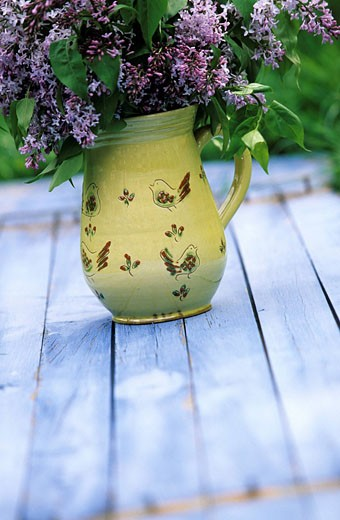 France, Drome, Cliousclat, Poterie de Cliousclat pottery workshop, water jug and lilac, compulsory mention : Stock Photo