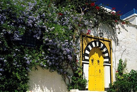 Stock Photo: 1792-79063 Tunisia, Sidi Bou Said, door and flowery facade