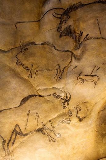 France, Ariege,Tarascon sur Ariege, Parc de l'Art Prehistorique The Prehistoric Art Park : Stock Photo