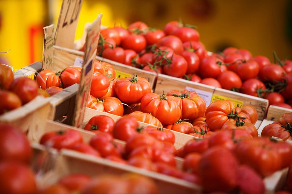 France, Gard, Villeneuve les Avignon, the market, grape tomatoes : Stock Photo