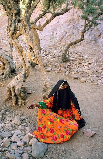 Stock Photo: 1792-89612 Egypt, Sinai Peninsula, near Saint Catherine, bedouin
