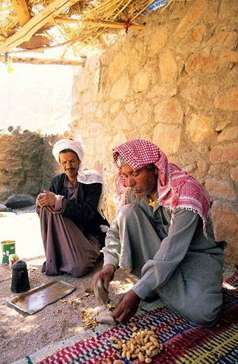 Stock Photo: 1792-89619 Egypt, Sinai Peninsula, Saint Catherine, Djebal Valley, bedouin breaking almonds