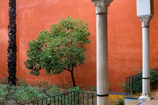Spain, Andalusia, Sevilla, Reales Alcazares, Royal Palace listed as World Heritage by UNESCO, patio : Stock Photo