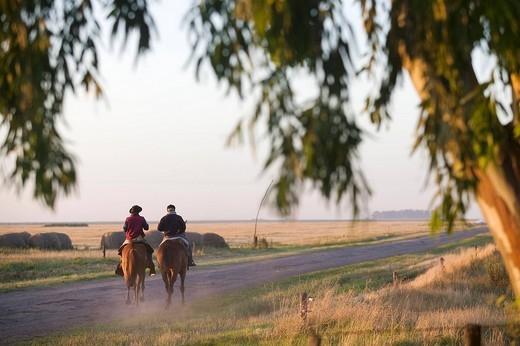 Argentina, Buenos Aires Province, Estancia San Isidro del Llano, gauchos : Stock Photo