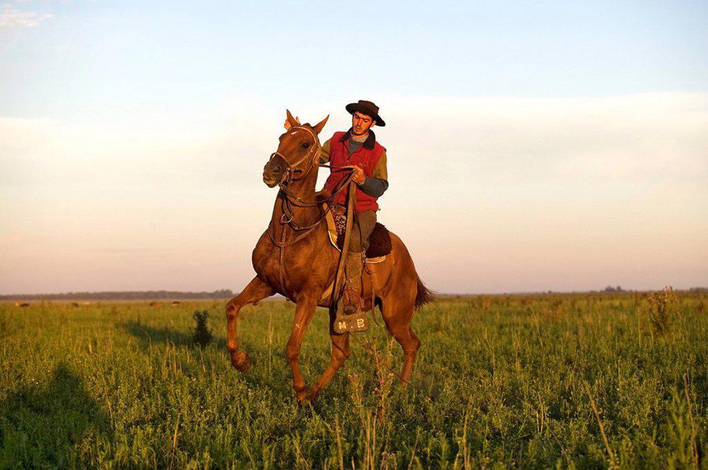 Stock Photo: 1792-94422 Argentina, Buenos Aires Province, Estancia San Isidro del Llano, gaucho