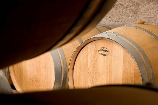 Stock Photo: 1792-97273 France, Gironde, Vignonet, Bordeaux vineyard, Chateau Vieux Taillefer AOC Saint Emilion wine store barrels