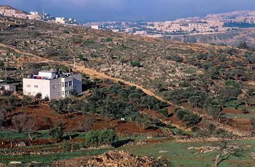 Israel, Jerusalem, holy city, East Jerusalem, holy city, Palestinian district : Stock Photo