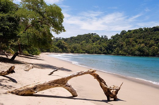 Stock Photo: 1792-98698 Costa Rica, Puntarenas Province, Manuel Antonio National Park