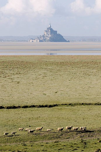 France, Manche, bay of Mont Saint Michel, listed as World Heritage by UNESCO, Pointe du Grouin : Stock Photo