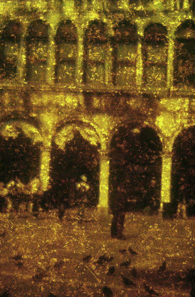Piazza San Marco, Venice, 2006, Andre Burian,  (b.1966/Brazilian), Photograph : Stock Photo