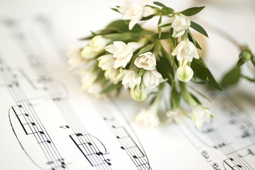 Still life of flowers and sheet music : Stock Photo