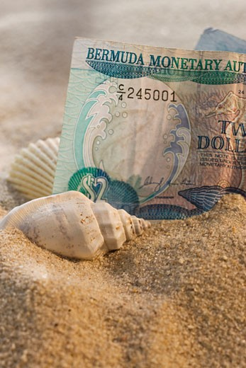 Stock Photo: 1795R-17861 Close up of Bermuda currency in sand with seashells
