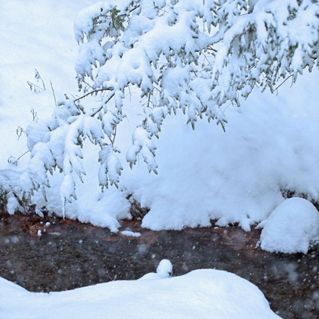 Stock Photo: 1795R-19253 Snowy stream in winter