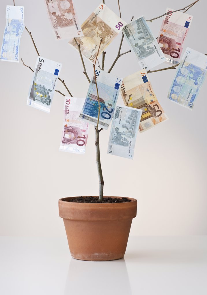 Stock Photo: 1795R-20894 Money growing in a pot