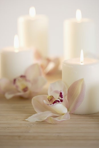 Stock Photo: 1795R-2276 Still life of orchids and candles
