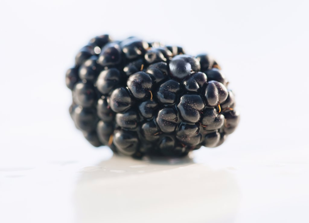 Single blackberry : Stock Photo