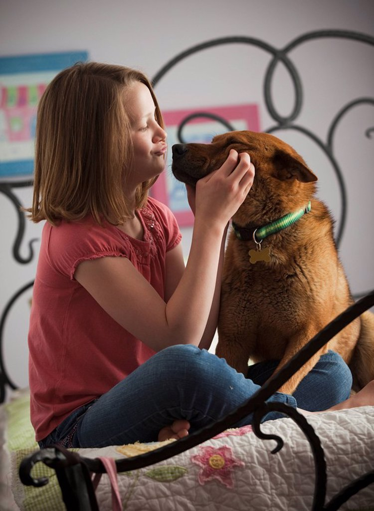 Stock Photo: 1795R-30701 Young girl playing with dog on bed