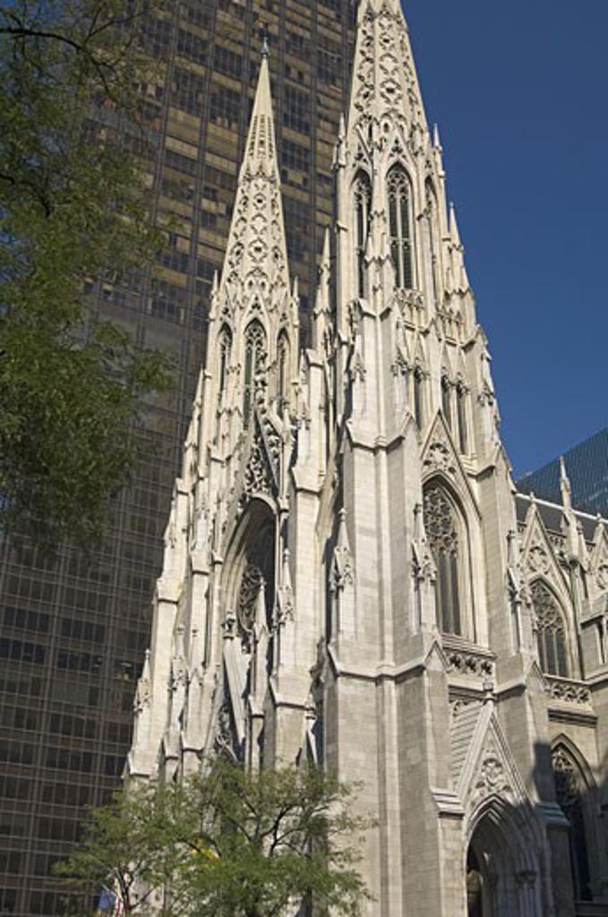 St Patricks Cathedral New York NY : Stock Photo
