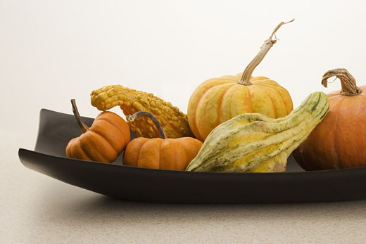 Stock Photo: 1795R-3260 Still life of gourds