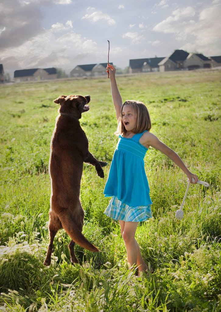 Young girl playing with her dog : Stock Photo