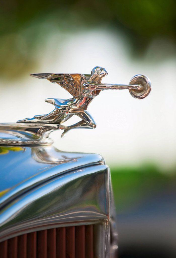 Hood ornament on classic car : Stock Photo