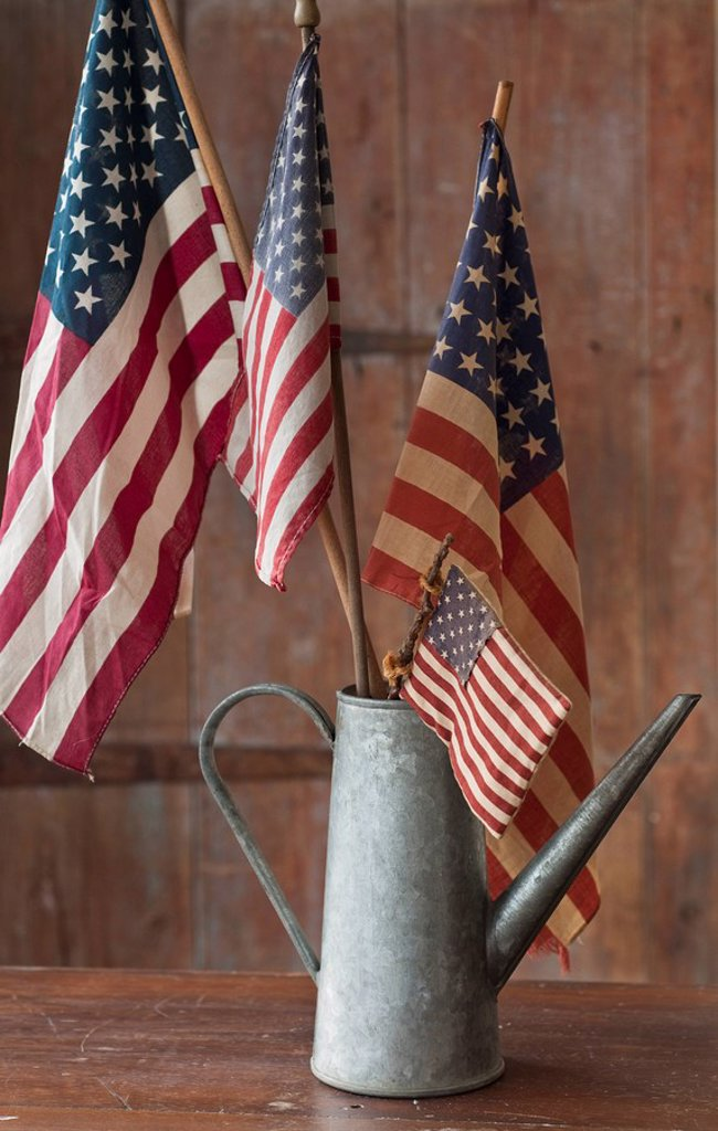 Stock Photo: 1795R-36851 American flags in watering can
