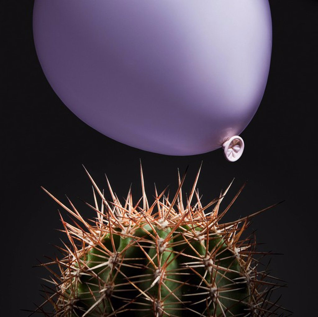 Stock Photo: 1795R-38106 Balloon close to cactus thorns