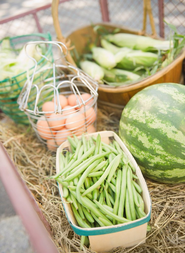 USA, New York, Flanders, Organic beans, watermelon, eggs, and corn : Stock Photo