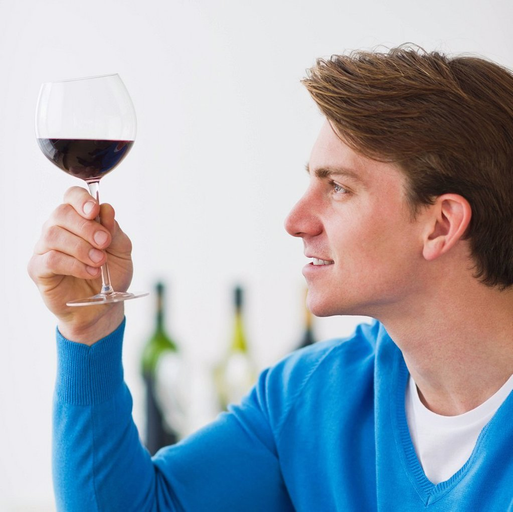 Stock Photo: 1795R-41873 Young man examining red wine