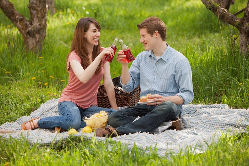 Stock Photo: 1795R-42367 USA, Utah, Provo, Young couple toasting drinks during picnic
