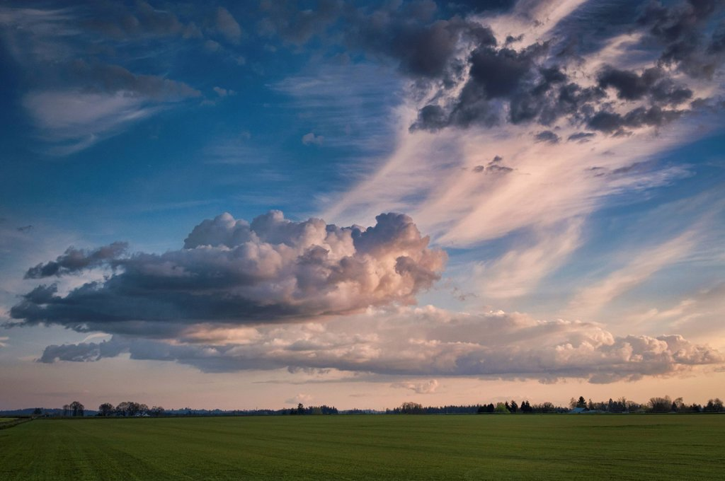 Stock Photo: 1795R-42427 USA, Oregon, Marion County, Cloudy sky over field