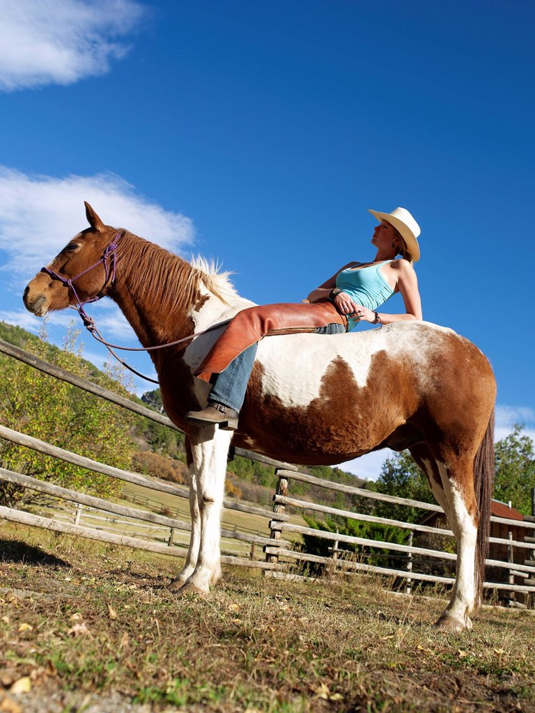 Stock Photo: 1795R-45784 USA, Colorado, Cowgirl relaxing with horse on ranch