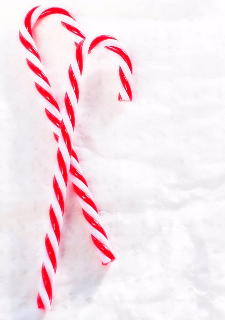 Christmas candy canes : Stock Photo