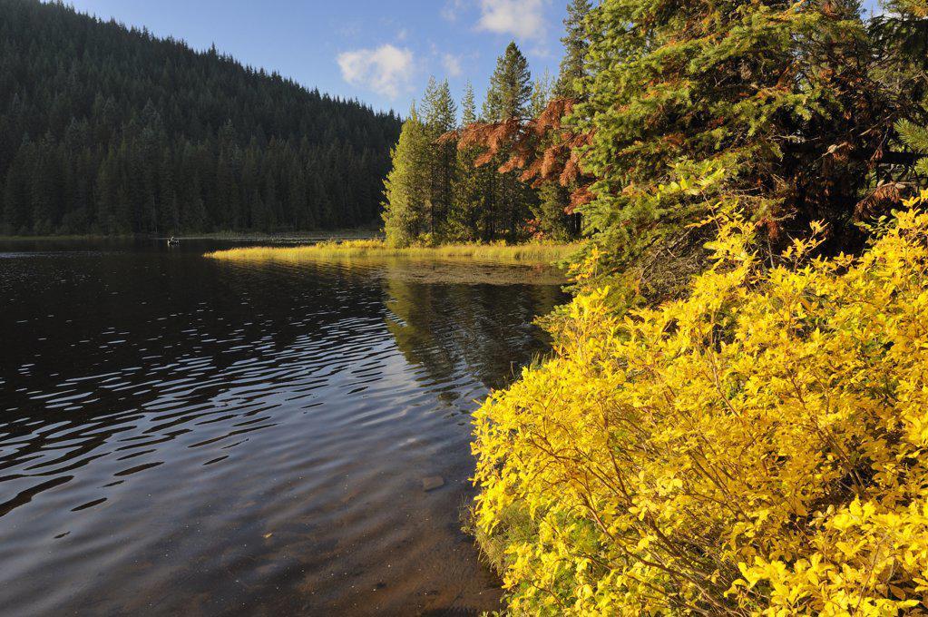 USA, Oregon, Multnomah County, Trillium Lake : Stock Photo