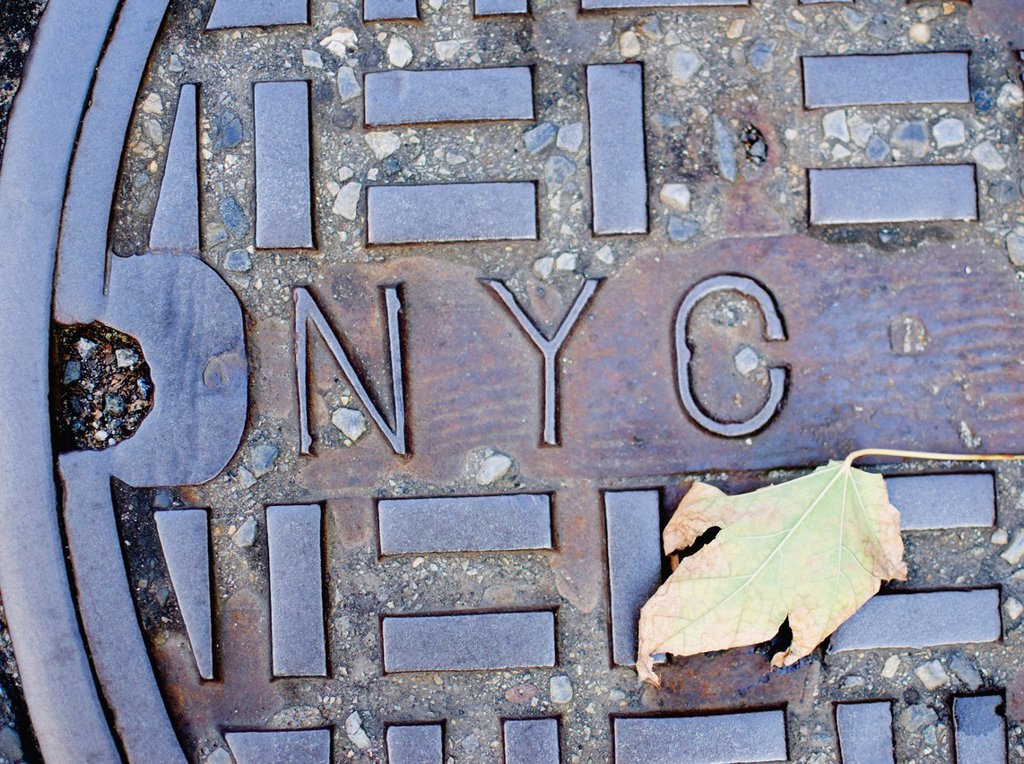 Stock Photo: 1795R-62680 USA, New York State, New York City, Manhole and Fall leaf